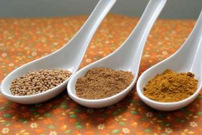 Foto 1 (mostarda - garam massala - curry)
