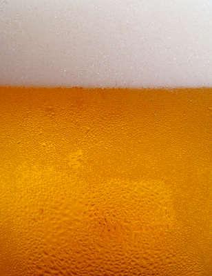 xampu_de_cerveja
