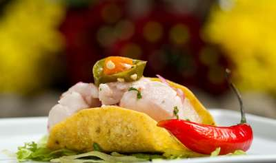 comida-nova-andina