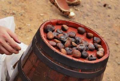 Magusto - castanhas portuguesas assadas (1)