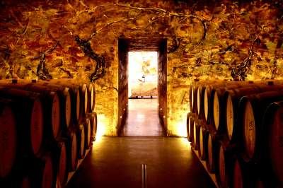 Tasting Room at The Winery at VIK, entrance detail