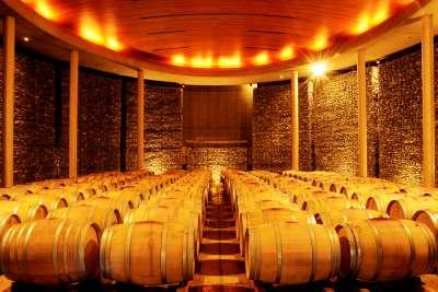 Wine Cellar at Matetic Vineyards