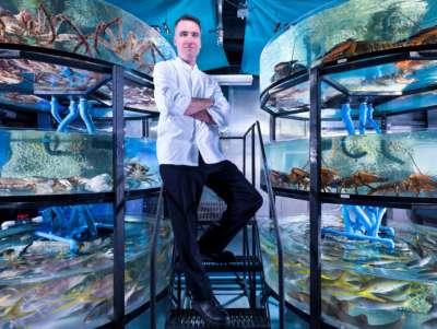 Foto - BleauFish - Water world - FONTAINEBLEAU - M